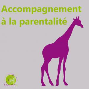 accompagnement scolarité parentalité outils